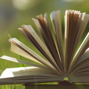 Storytelling – Märchen im psychologischen Setting