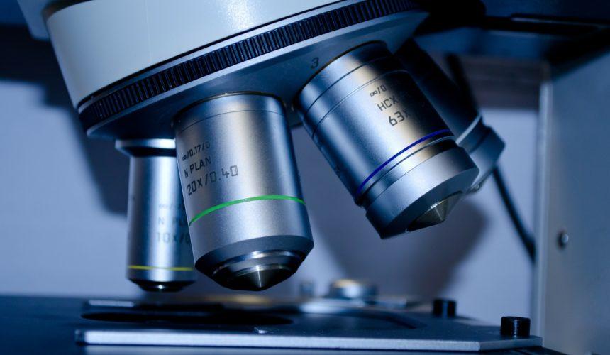 Dunkelfeldmikroskopie – Einblicke, die das Blut gewährt