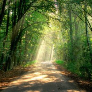Memmingen – Tag der meditativen Erfahrung