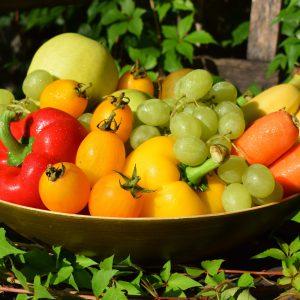 Fernlehrgang Ernährungsberatung