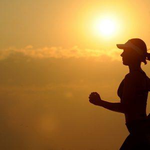 Präsenzseminar Trainingsberatung und Leistungsdiagnostik (Fernlehrgang Gesundheitsberater und Fitnesscoaching)