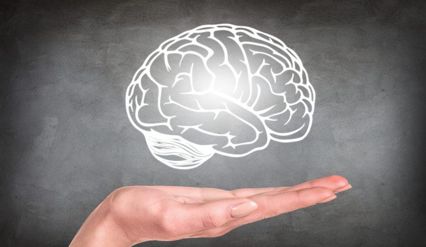 Lerntipps – gehirngerecht Lernen