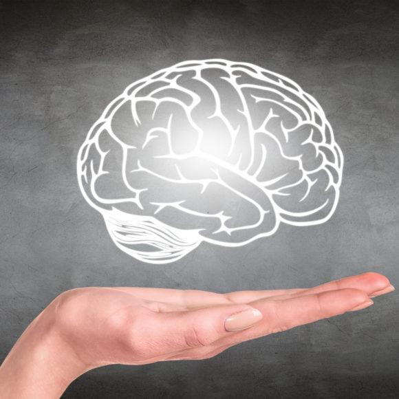 Video: Die Gehirnforschung und ihre Bedeutung für Pädagogik, Psychotherapie und Trauma-Arbeit