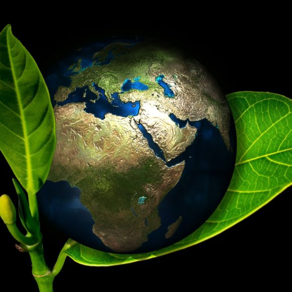 Tag der Erde – Earth Day am 22. April
