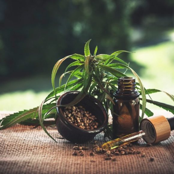 Hanf – mehr als eine Highpflanze