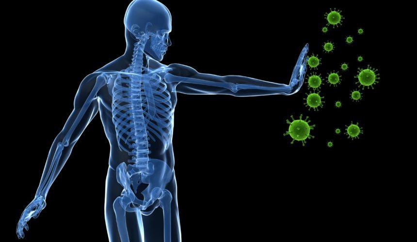 Schutz vor Corona, Influenza & Co. – Naturheilkundliche Strategien zur Prophylaxe und Steigerung der Immunabwehr