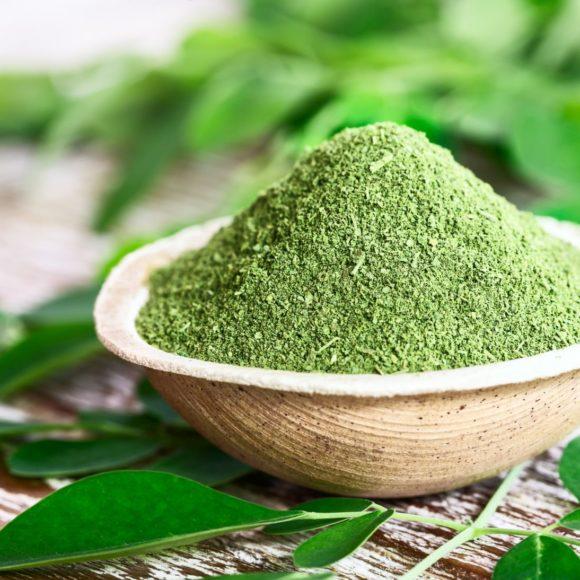 Moringa – der Wunderbaum