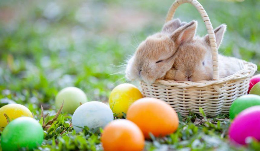 Von Ostara bis Ostern – Ursprung und Bräuche des Osterfests